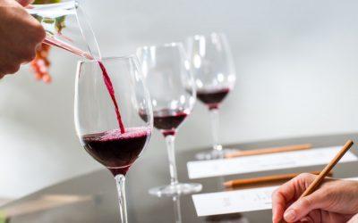 Escollir vi a l'estiu, quina és la millor opció quan pugen les temperatures?