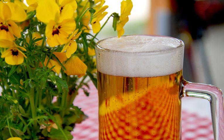 Beure cervesa, té beneficis?