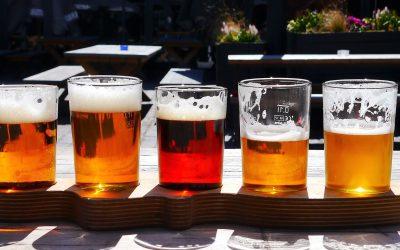 Organitza un tast de cervesa