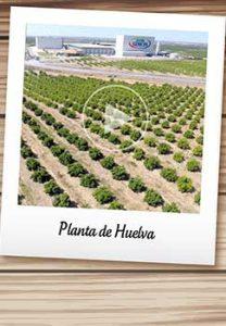 Planta de Huelva Don Simón