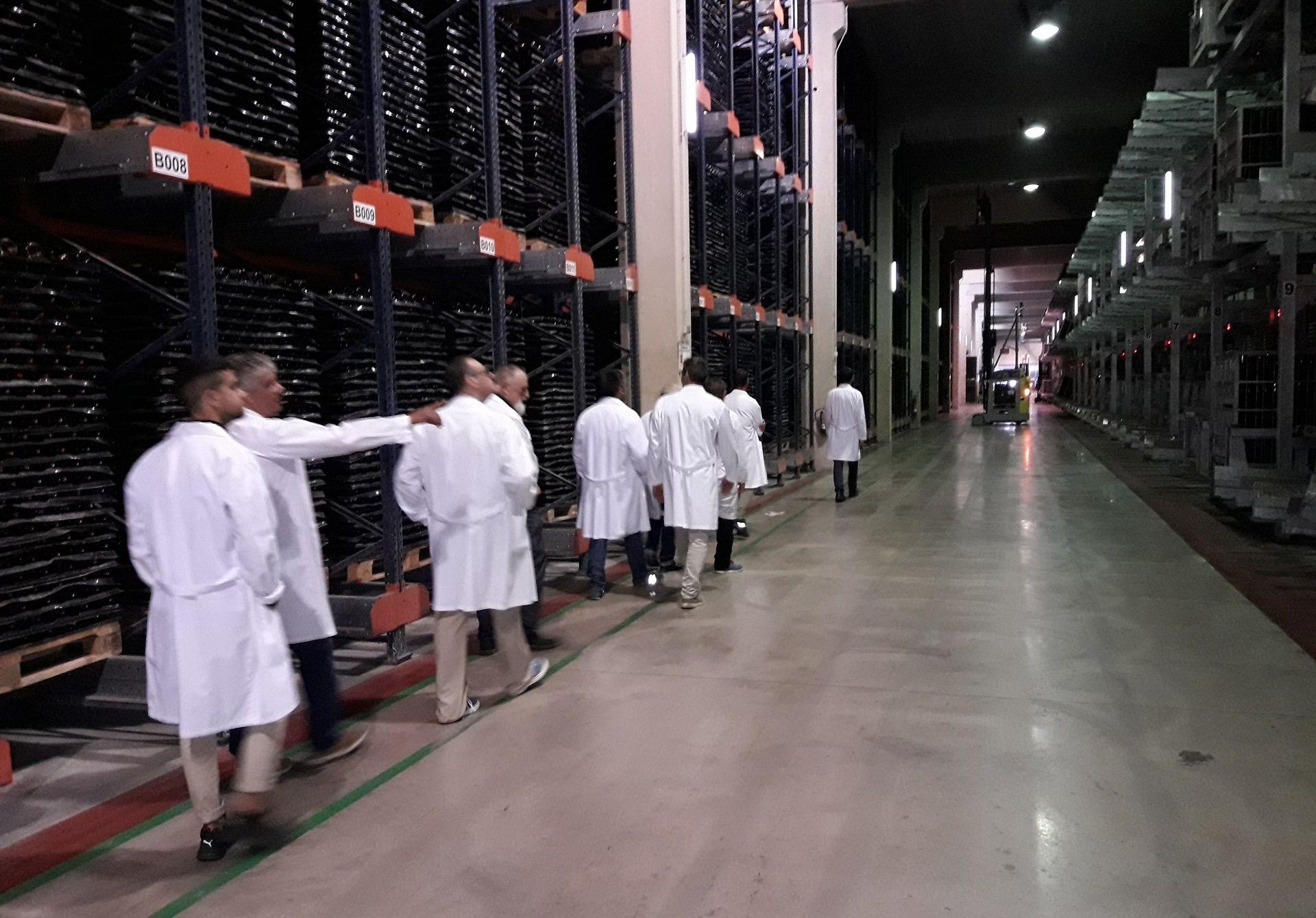 Equipo comercial de DISTECO en las Bodegas Jaume Serra